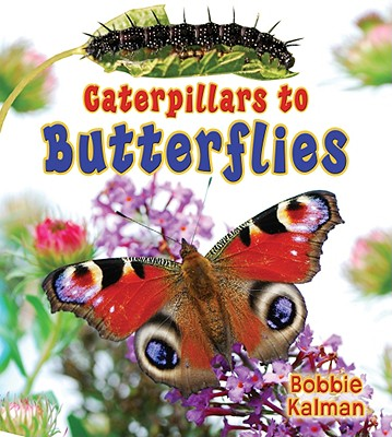 Caterpillars to Butterflies By Kalman, Bobbie